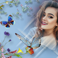 Butterfly Frames for Pictures