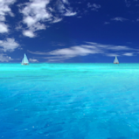 Calm Ocean Waves Sounds: Relax Music, White Noise