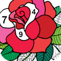 Color by Number - New Coloring Book