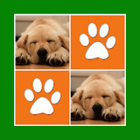 Cute Dogs Memory Match Game - Card Pairs