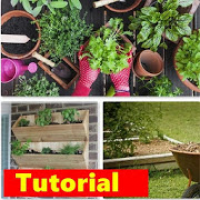 DIY Gardening Planting | Tips And Trick