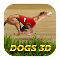Dogs3D Races Betting