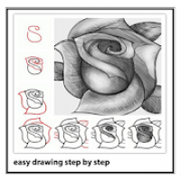 Easy Drawing Steps By Step
