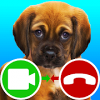 fake call video puppy game