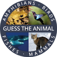 Guess the Animal Quiz App: Guessing Games for Free