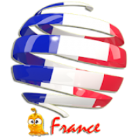 Learn French Vocabulary Pro