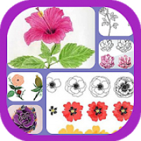 Learn to Draw Flowers