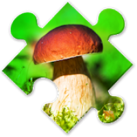 Mushrooms Puzzles:nature jigsaw puzzles for brave