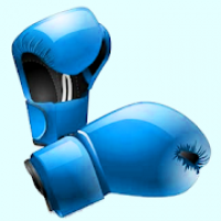 PunchFit: Punch Fit Boxing Training Workouts: HIIT