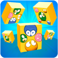 Roll The Block - Slide Puzzle