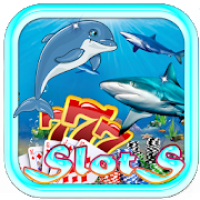 Shark Vs Dolphin Casino Slots