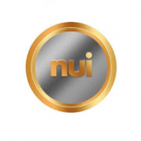 Tools for NUI International Business