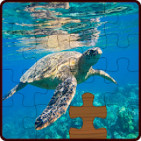 Under the sea and ocean life Jigsaw Puzzles 🐠