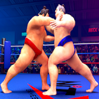 wrestling games sumo fighting 3d free game
